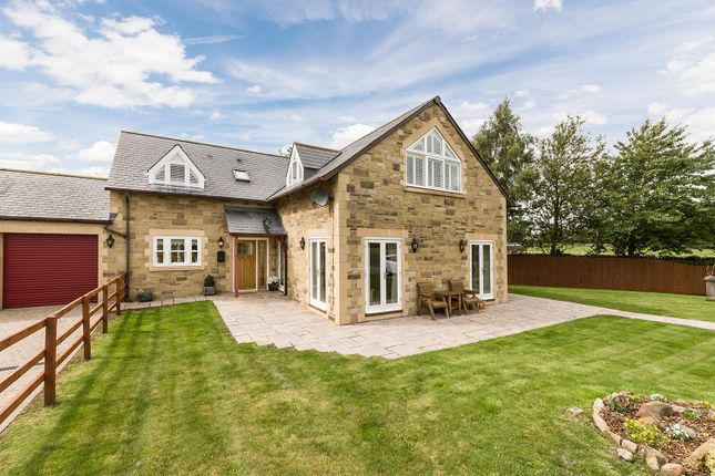 Thumbnail Equestrian property for sale in North House, East Marlish, Hartburn, Morpeth, Northumberland