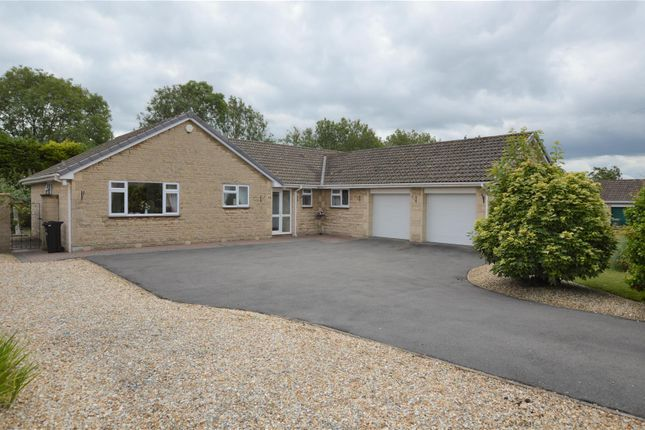Thumbnail Detached bungalow for sale in St. Peters Road, Westfield, Radstock