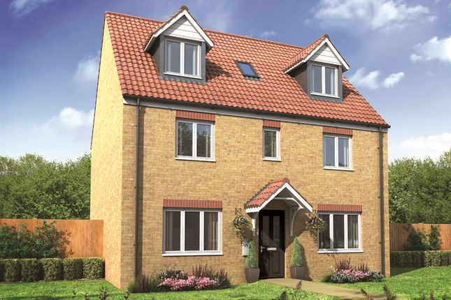 "Thumbnail Detached house for sale in ""The Newton"" at Drayton High Road, Hellesdon, Norwich"