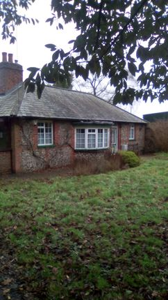 Thumbnail Bungalow to rent in Rook Lane, Chaldon Caterham