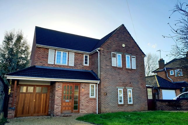 Thumbnail Detached House To Rent In Blenheim Avenue Southampton