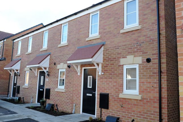 """Thumbnail Terraced house for sale in """"The Morden """" at The Rings, Ingleby Barwick, Stockton-On-Tees"""