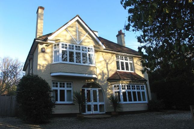 Thumbnail Detached house to rent in Knightsbridge Road, Camberley