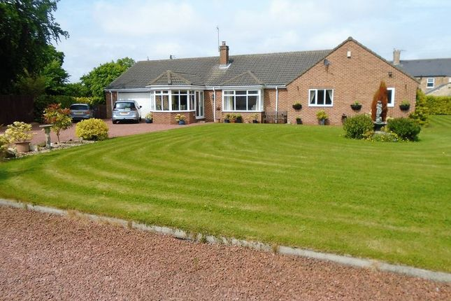 Thumbnail Detached bungalow for sale in The Grange, Grangewood Terrace, Stobswood, Morpeth