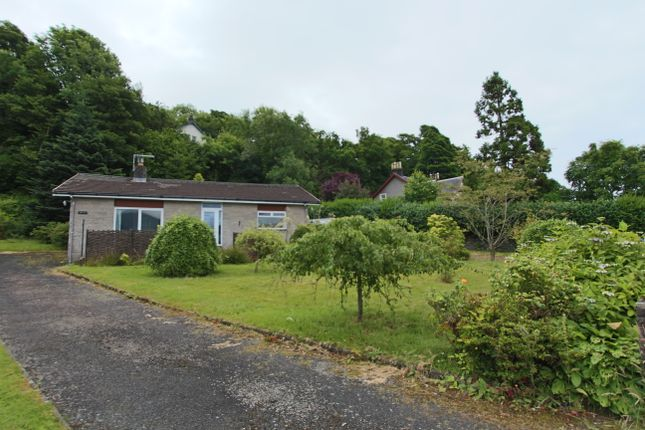 Thumbnail Detached bungalow for sale in Shore Road, Cove