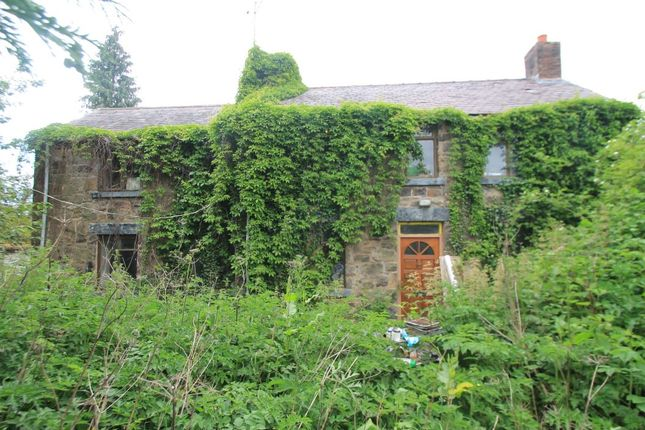 Thumbnail Detached house for sale in Riverside Cottage, Fellows Lane, Caergwrle, Wrexham