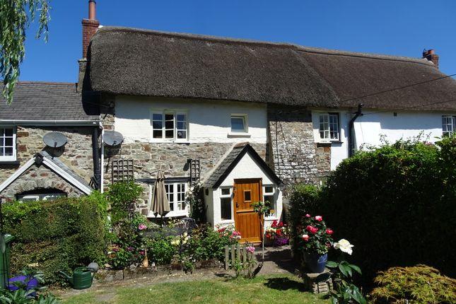 Thumbnail Cottage for sale in Chittlehamholt, Devon