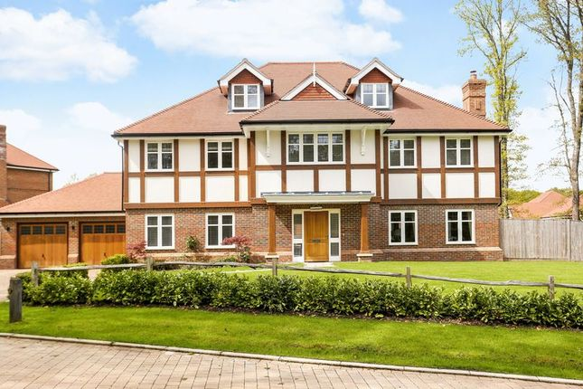 Thumbnail Detached house for sale in Fern Mead, Cranleigh