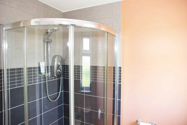 Shower of Place Parc, Newquay TR7