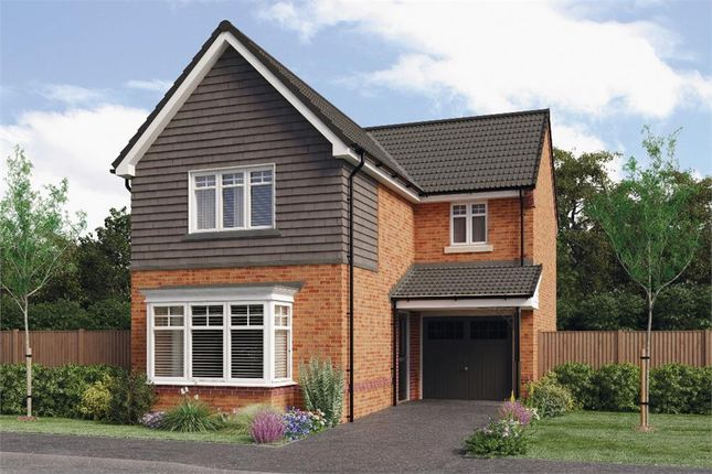 """Thumbnail Detached house for sale in """"Orwell"""" at Croston Road, Farington Moss, Leyland"""