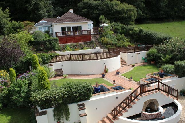 Thumbnail Detached bungalow for sale in Trow Hill, Sidmouth