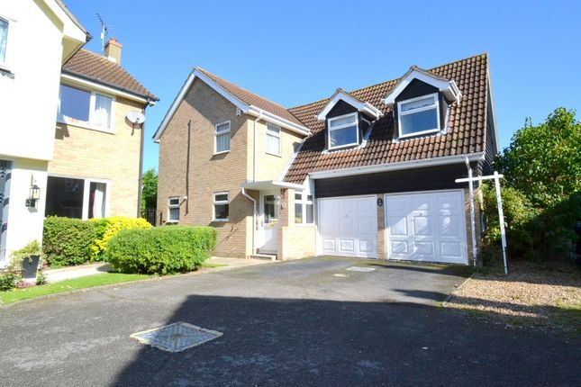 Thumbnail Detached house for sale in Holbrook Close, Great Waldingfield, Sudbury