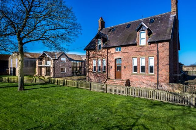 Thumbnail Equestrian property for sale in Plumpton Lane, Halsall, Ormskirk
