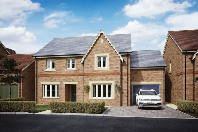 Thumbnail Detached house for sale in Lydgate Fields, Fairfield, Hitchin, Herts