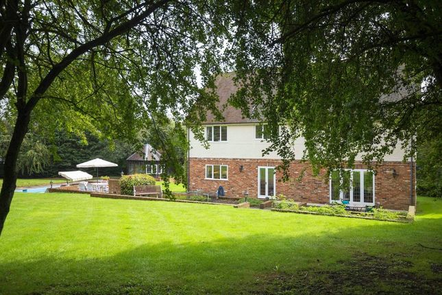 Thumbnail Detached house for sale in Wareside, Ware