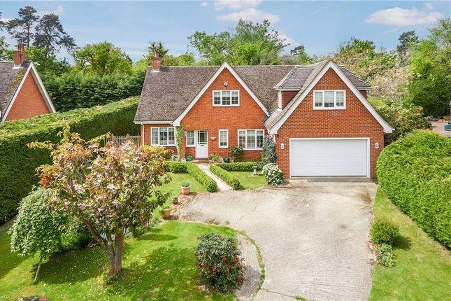 Thumbnail Detached house for sale in Cornford Close, Pembury, Tunbridge Wells