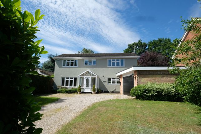 Thumbnail Detached house for sale in Chestnut Walk, Little Baddow