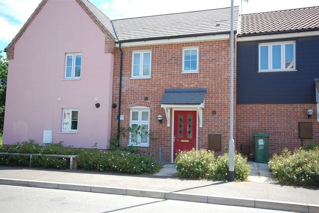 Thumbnail Terraced house to rent in Anthony Nolan Road, King's Lynn