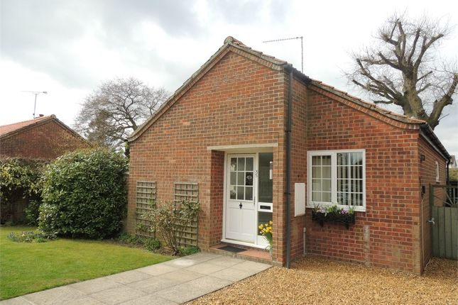 Thumbnail Detached bungalow for sale in Walcups Lane, Great Massingham, King's Lynn