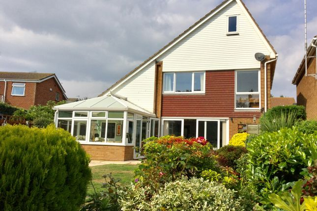 Thumbnail Detached house for sale in The Pines, Old Felixstowe