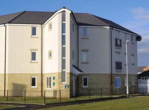 Thumbnail Flat to rent in Taku Court, Blyth