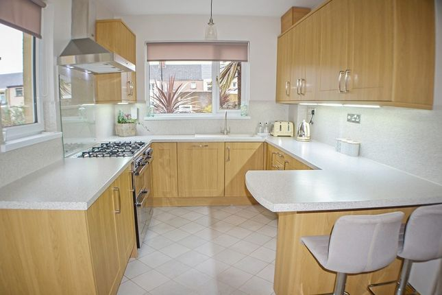 Kitchen of Evelyn Terrace, Port Talbot, Neath Port Talbot. SA13