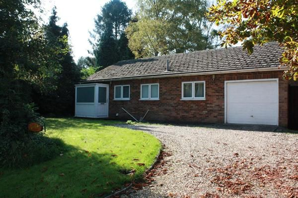Thumbnail Bungalow to rent in Hales Bungalow, Manor Street, Wistow