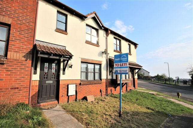 Thumbnail Terraced house to rent in Jasmine Grove, Paignton