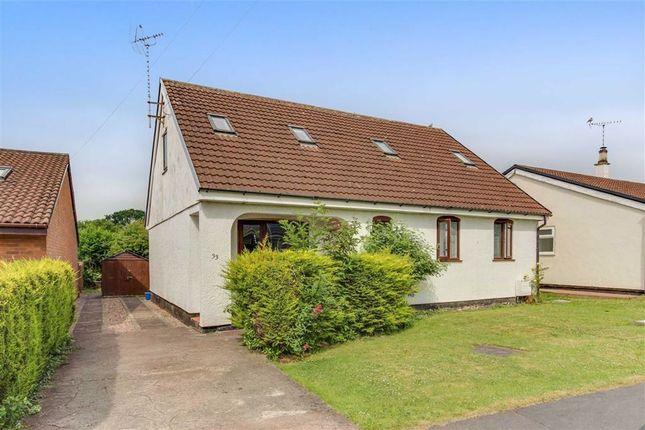 5 bed detached bungalow to rent in Elm Drive, Mold, Flintshire CH7