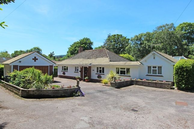 Thumbnail Bungalow for sale in Sid Road, Sidmouth