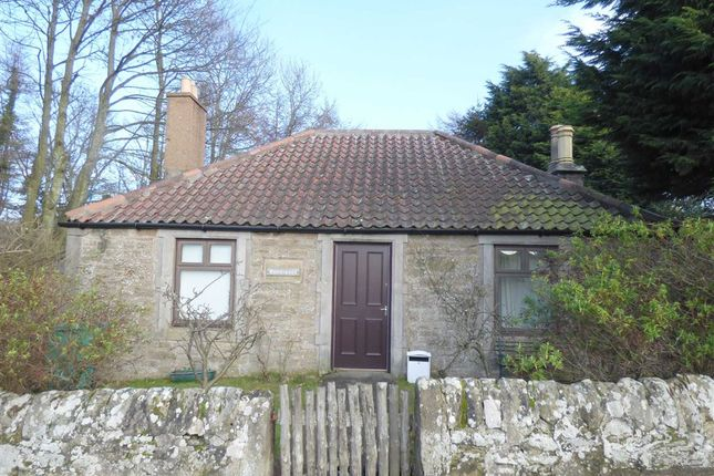Thumbnail Cottage for sale in Dunino, St. Andrews