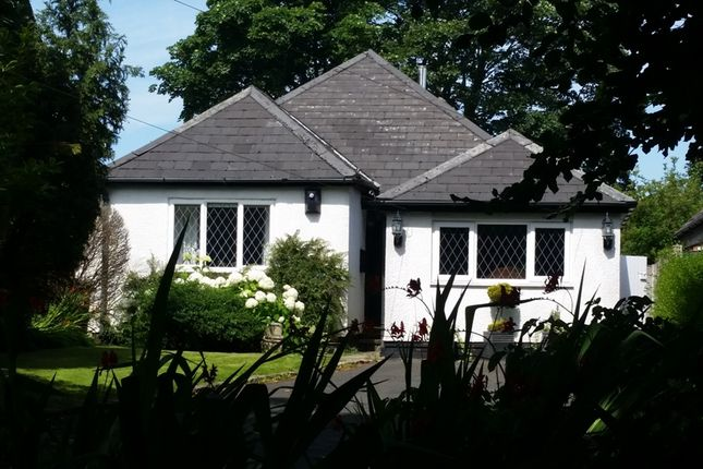 Thumbnail Detached bungalow to rent in Holborn Hill, Ormskirk, Lancashire