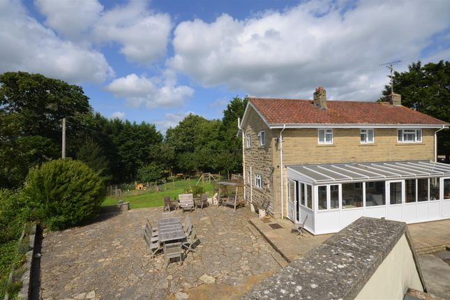 Thumbnail Detached house for sale in Middlemarsh, Sherborne