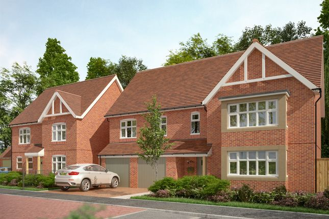 Thumbnail Detached house for sale in The Primrose, Wildflower Rise, Mansfield