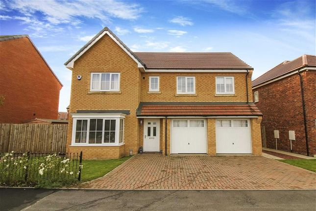 Thumbnail Detached house to rent in Dobson Lane, Seaton Delaval, Northumberland