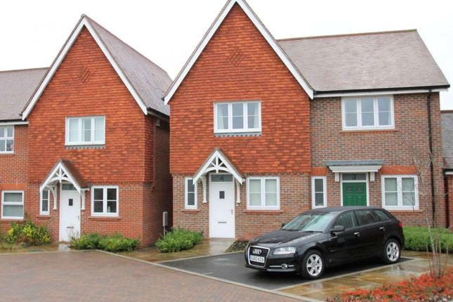 Thumbnail Semi-detached house to rent in Scholars Walk, Horsham