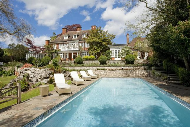 Thumbnail Detached house to rent in George Road, Kingston Upon Thames