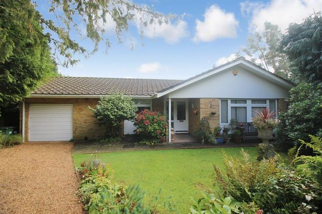 3 bed detached bungalow for sale in Chapel Road, Tadworth