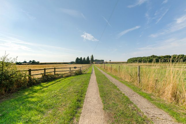 Thumbnail Equestrian property for sale in Wood End Road, Kempston, Bedford, Bedfordshire