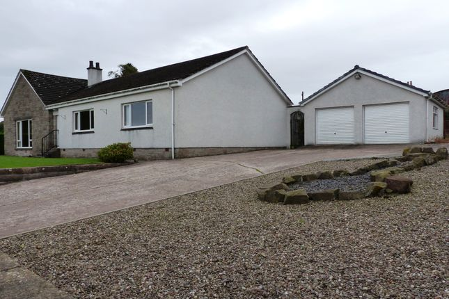 Thumbnail Detached bungalow for sale in Braehead Road, Letham