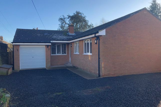 Thumbnail Detached bungalow to rent in Glebelands, Alnwick, Northumberland