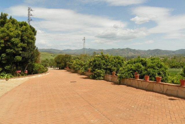 Driveway of Spain, Málaga, Álora