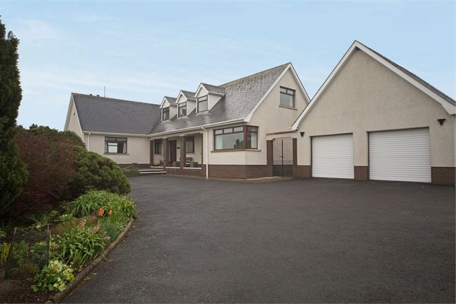 Detached bungalow for sale in Ballyblack Road East, Newtownards, County Down