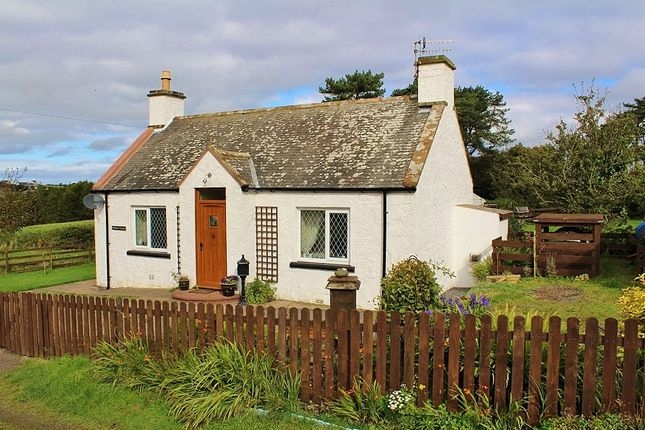 Thumbnail Cottage for sale in Hillhead Of Craichmore Cottage, Leswalt