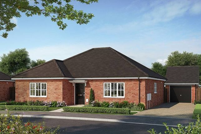 """Thumbnail Bungalow for sale in """"The Harston"""" at Bury Water Lane, Newport, Saffron Walden"""