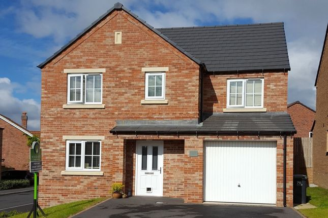 Thumbnail Detached house to rent in Redmire Drive, Consett