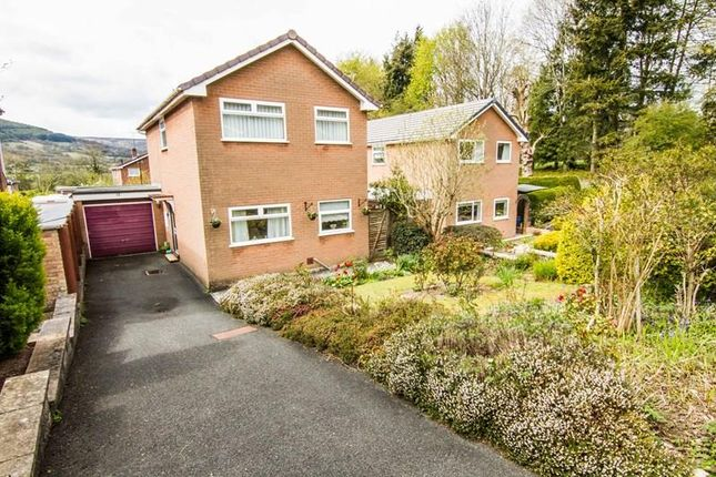 Thumbnail Detached house for sale in Meadow Lane, Abergavenny