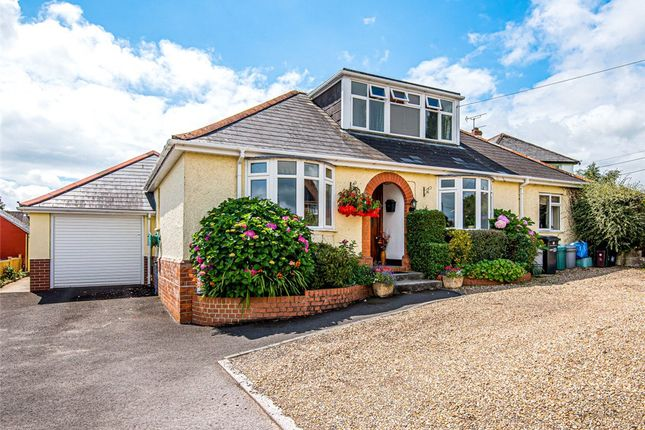 Thumbnail Bungalow for sale in Forton Road, Chard