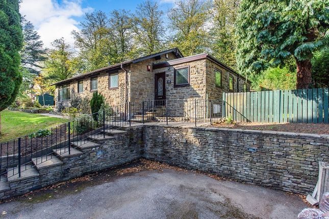 Thumbnail Bungalow to rent in Tivy Dale, Cawthorne, Barnsley