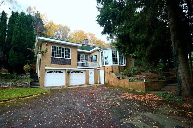 Thumbnail Bungalow to rent in Birch Tree Lane, Baldwins Gate, Newcastle-Under-Lyme